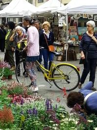 Italy, Turin, temporary flower market