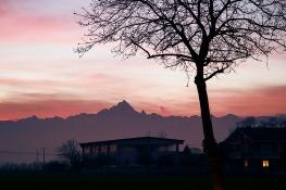 Italy, Piedmont, Il noce e la Casa