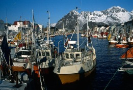 Norway, Lofoten Islands, Henningsvaer, fishing harbour